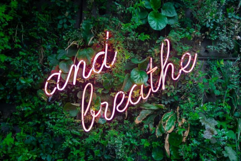 neon pink sign that says and breathe with leaves in background