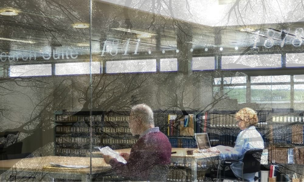 Photograph of two people studying in a research library with the image of tree branches superimposed on the room.