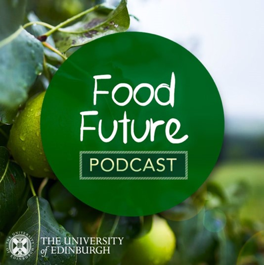 Picture of a green circle with the words food future podcast in white in the centre. The circle covers the background image of an apple orchard with a closeup image of an apple with drain drops dripping off the apple on a cloudy day with grey sky in the background